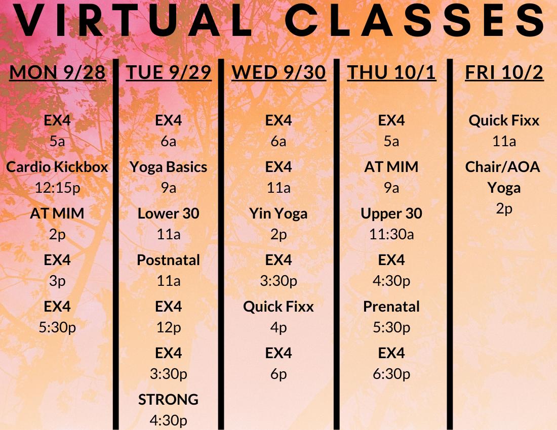 VIRTUAL-CLASSES-3.png
