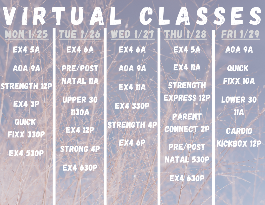 VIRTUAL-CLASSES-17.png