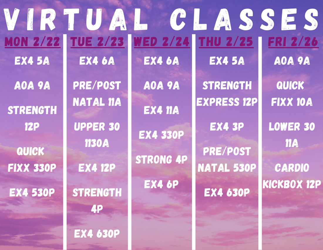 VIRTUAL-CLASSES-23.png