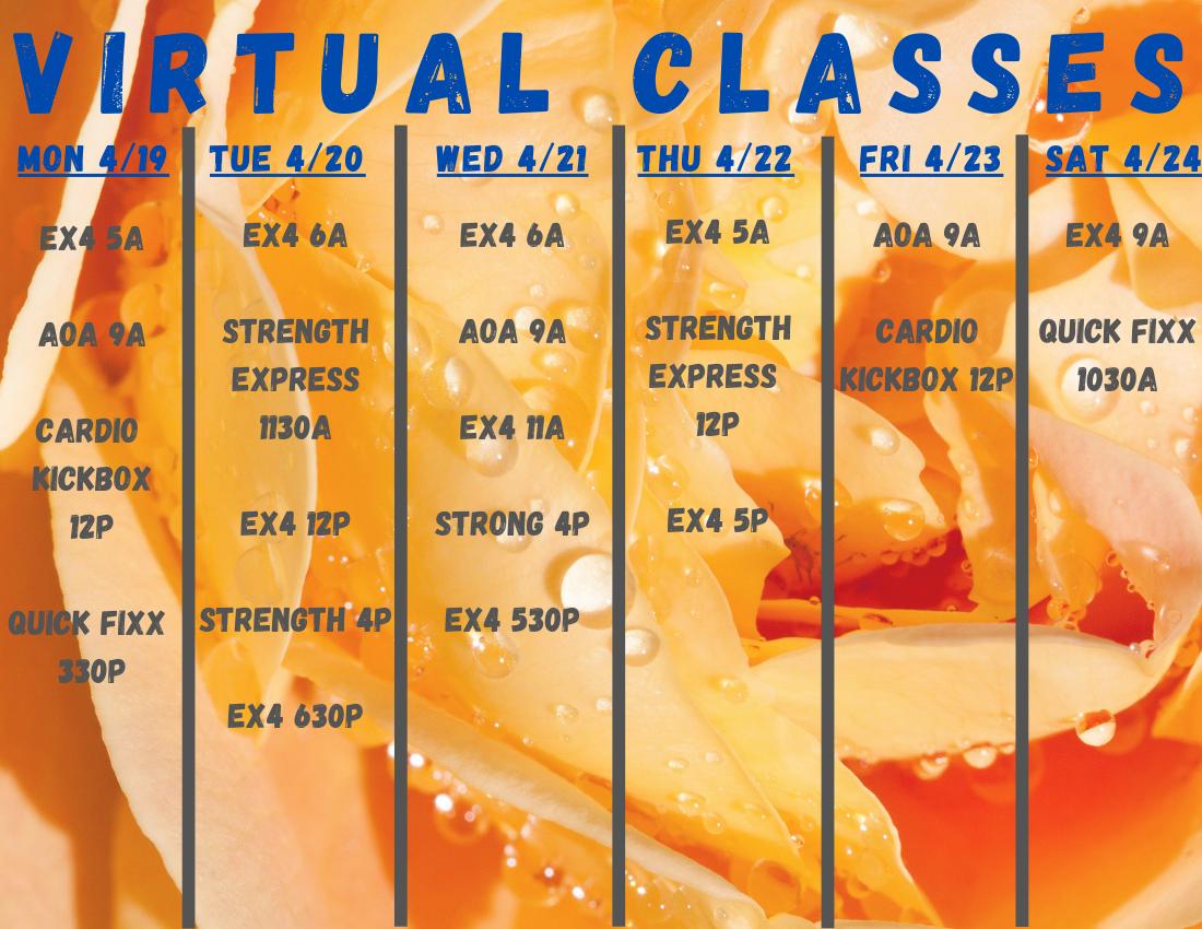 VIRTUAL-CLASSES-36.png