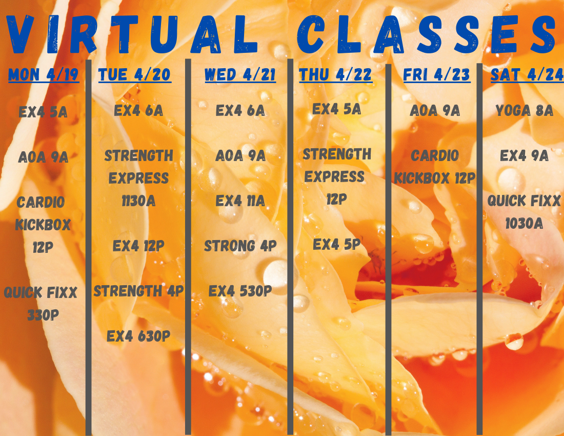 VIRTUAL-CLASSES-37.png