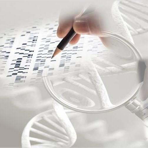 colagem de imagens representando testes genéticos