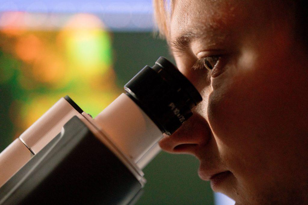 Mayo Clinic introduces new fellowship programs