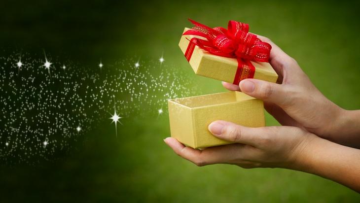 gift 730