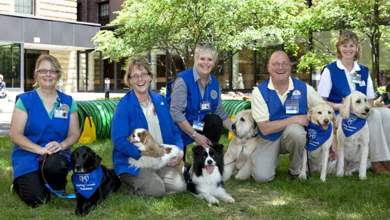 Visits from Caring Canine Therapy Dogs are a welcome distraction for patients.