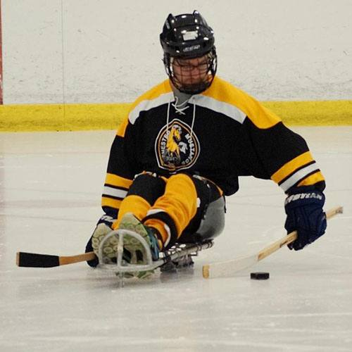 Rochester Mustangs sled hockey.