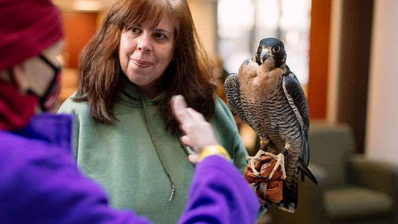 "Recently, staff at Mayo Clinic worked together to help a patient cross an item off her birding ""life list"" by arranging a visit with a peregrine falcon."