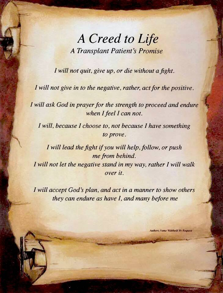 A Creed To Life