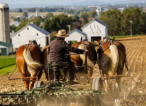 Researchers Crack the Code on Sudden Death Mystery in Amish Community
