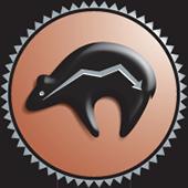 UNM Comprehensive Cancer Center Bear Logo
