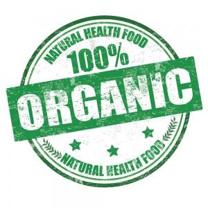 Illustration of organic food stamp