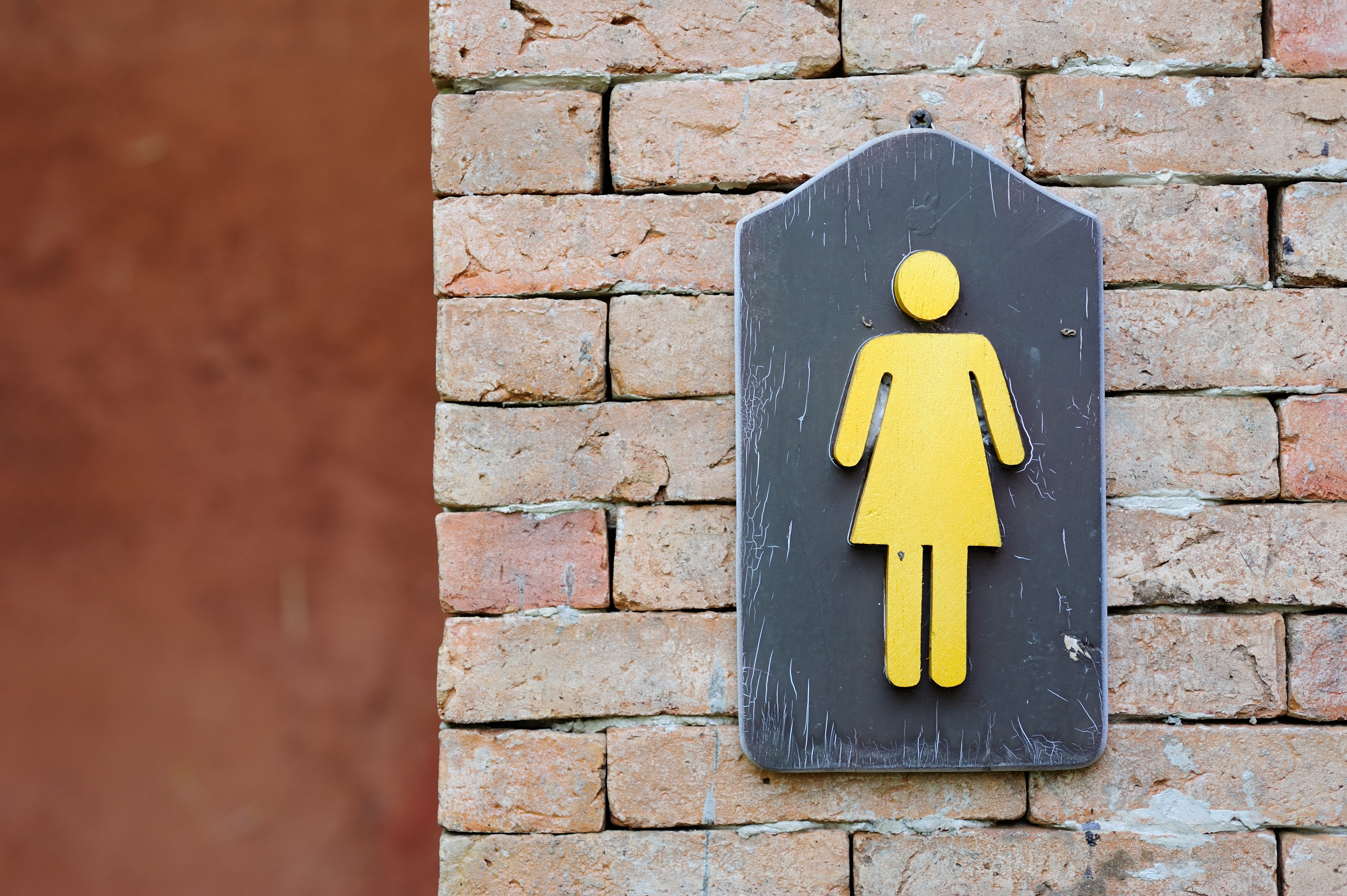 Woman's universal bathroom symbol - incontinence