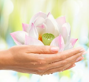 Women's health - female hands with exotic tropical flower on light background