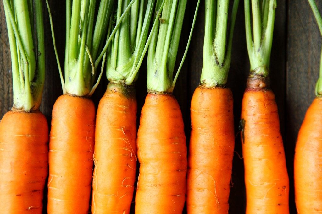 Organic vegetables - carrots
