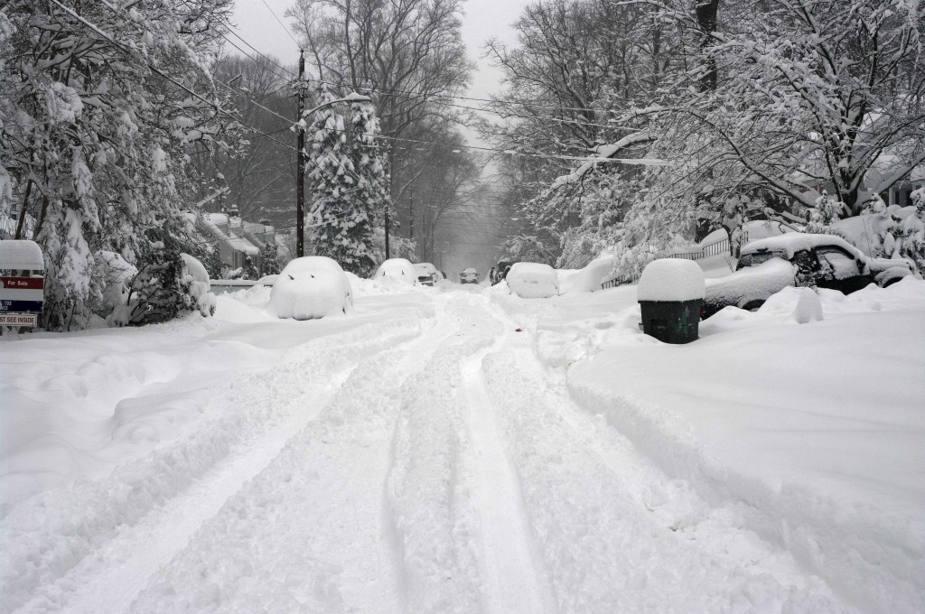 winter snow covered trees, streets and cars