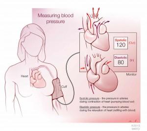 illustration describing how to measure blood pressure