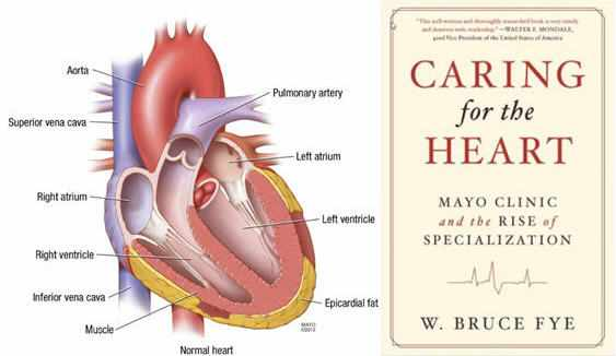 Caring for the Heart Book with illustration of a heart