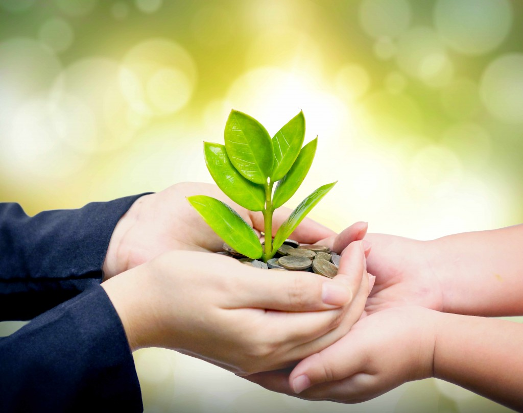 hands holding coins and green tree leaves representing values instead of weath