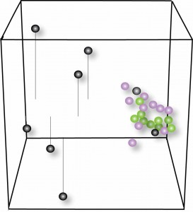Mayo Clinic researchers conducted a statistical analysis to determine the degree of divergence in differentially expressed RNAs in patients with c9ALS (black) with those in patients with sALS (purple) or healthy individuals (green, controls). Changes in c9ALS distinctly diverge from the other two groups as the black circles are farthest from the purple and green circles. Each circle represents an individual included in the study, color-coded depending on its group membership, and shown in a linear transformation on a vector space (3-D cube).