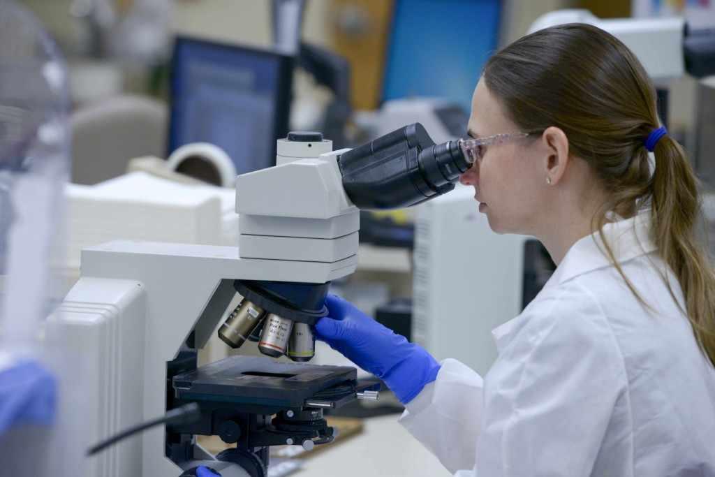 un científico trabaja en el laboratorio