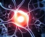 Illustration of brain synapse