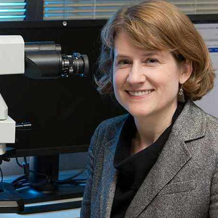 Dr. Bobbi Pritt in the laboratory with a microscope