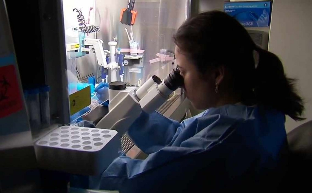 woman working in regenerative medicine lab on stem cell research