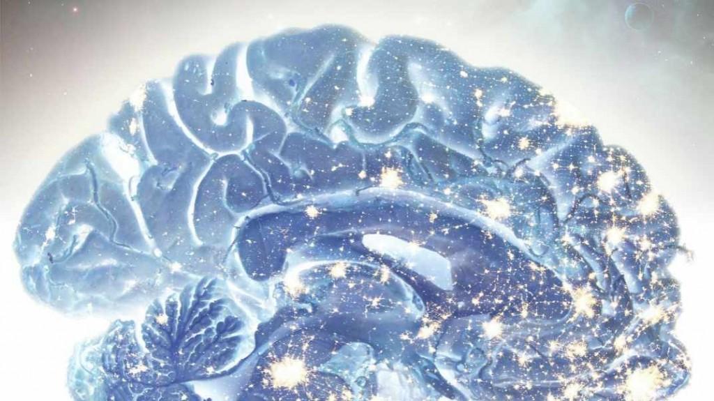Ilustración del cerebro que muestra las sinapsis