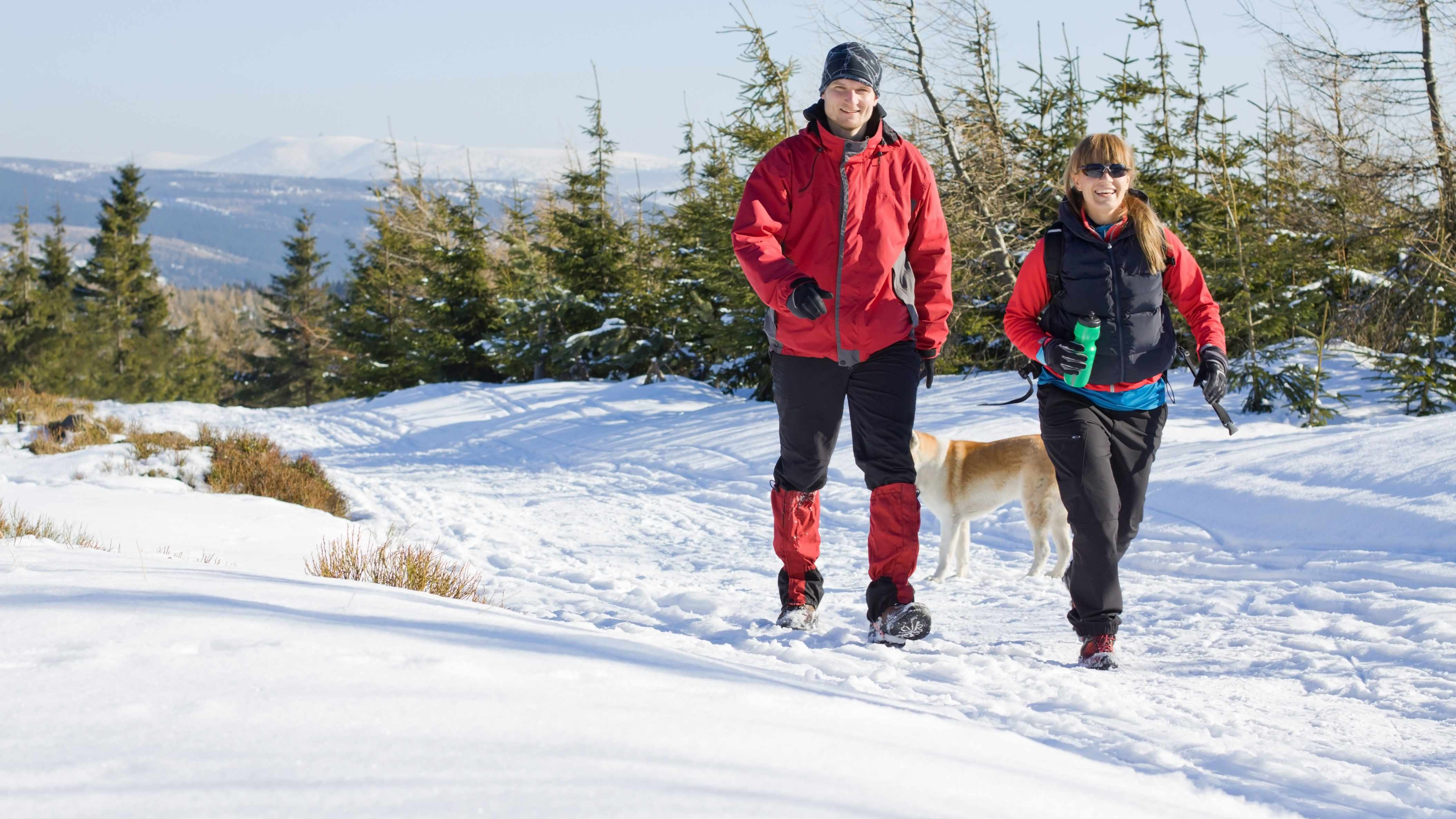 couple hiking with their dog in the snow