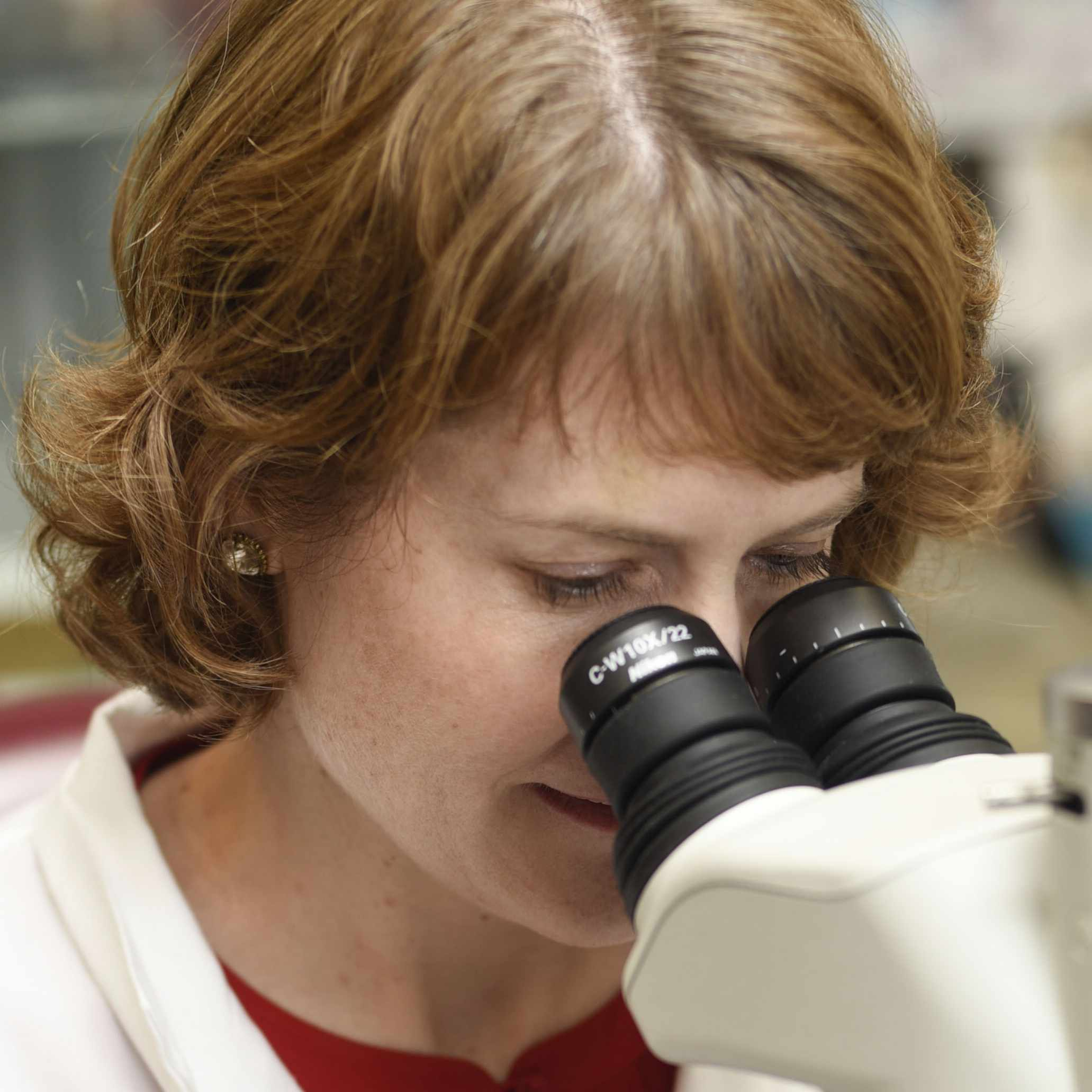 Dr. Bobbi Pritt in a lab, looking through a microscope