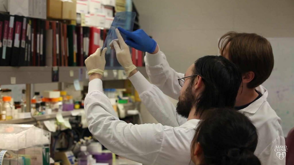 Mayo Clinic researchers looking at a slide