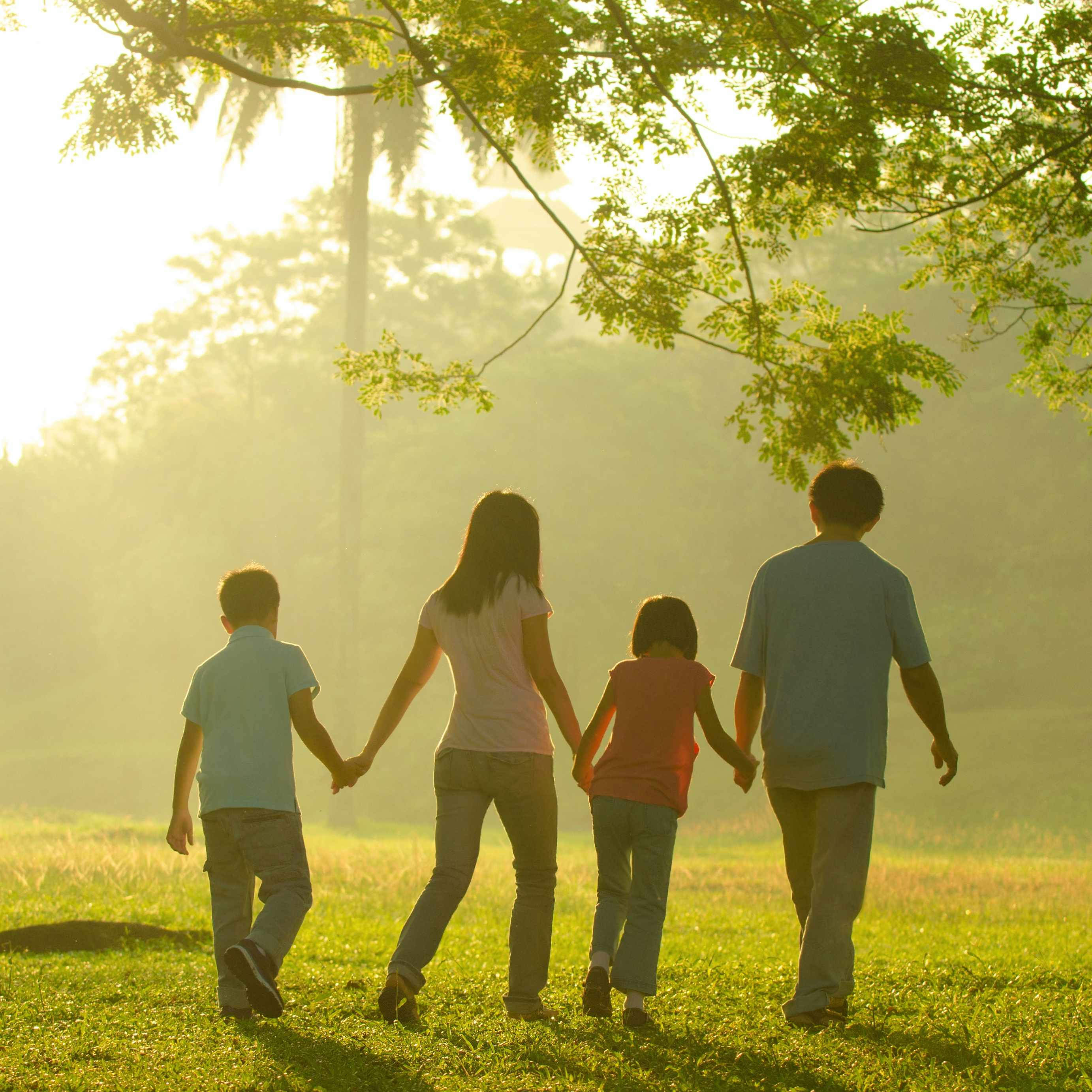 adults and chidren holding hands and walking together through the trees on a sunny day