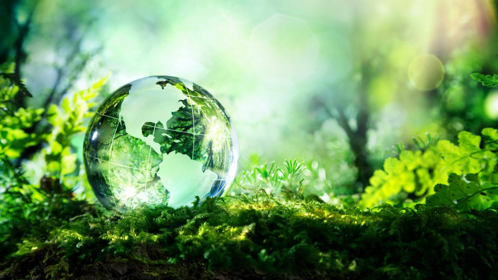 glass globe laying in green grass of a forest, representing ecology and clean environment