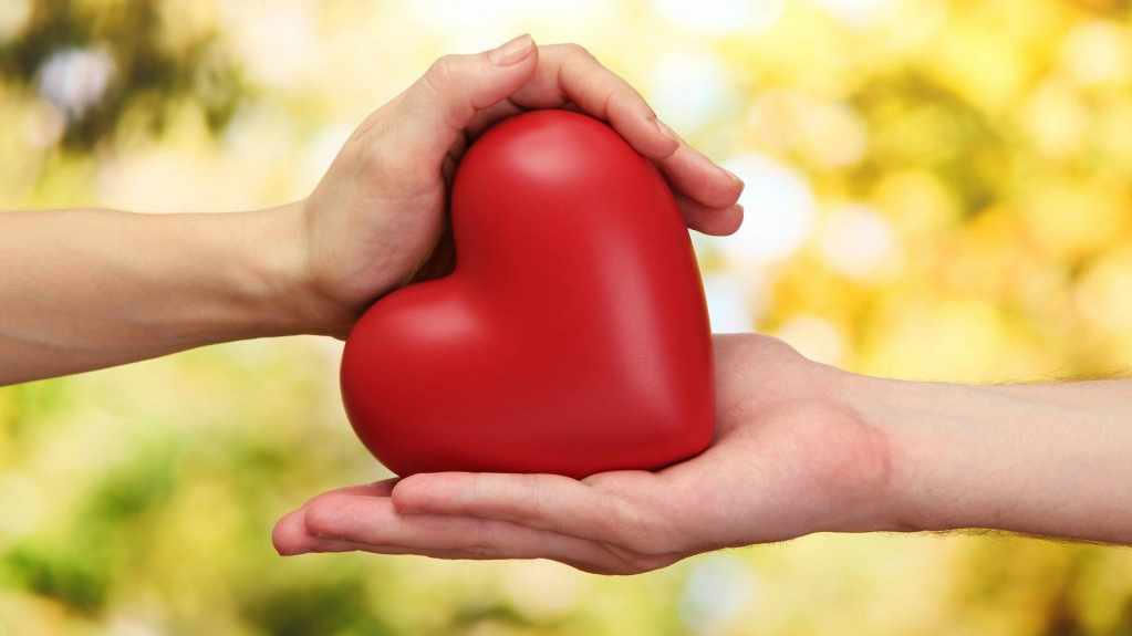 hands holding a plastic heart