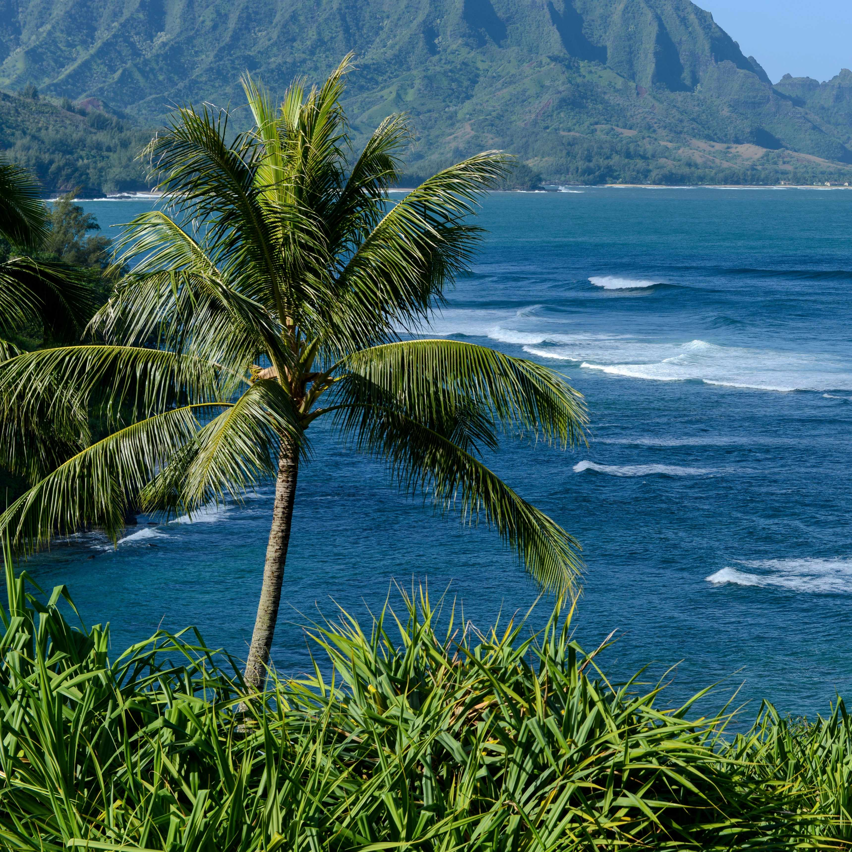 a beach picture of the ocean and mountains in Hawaii