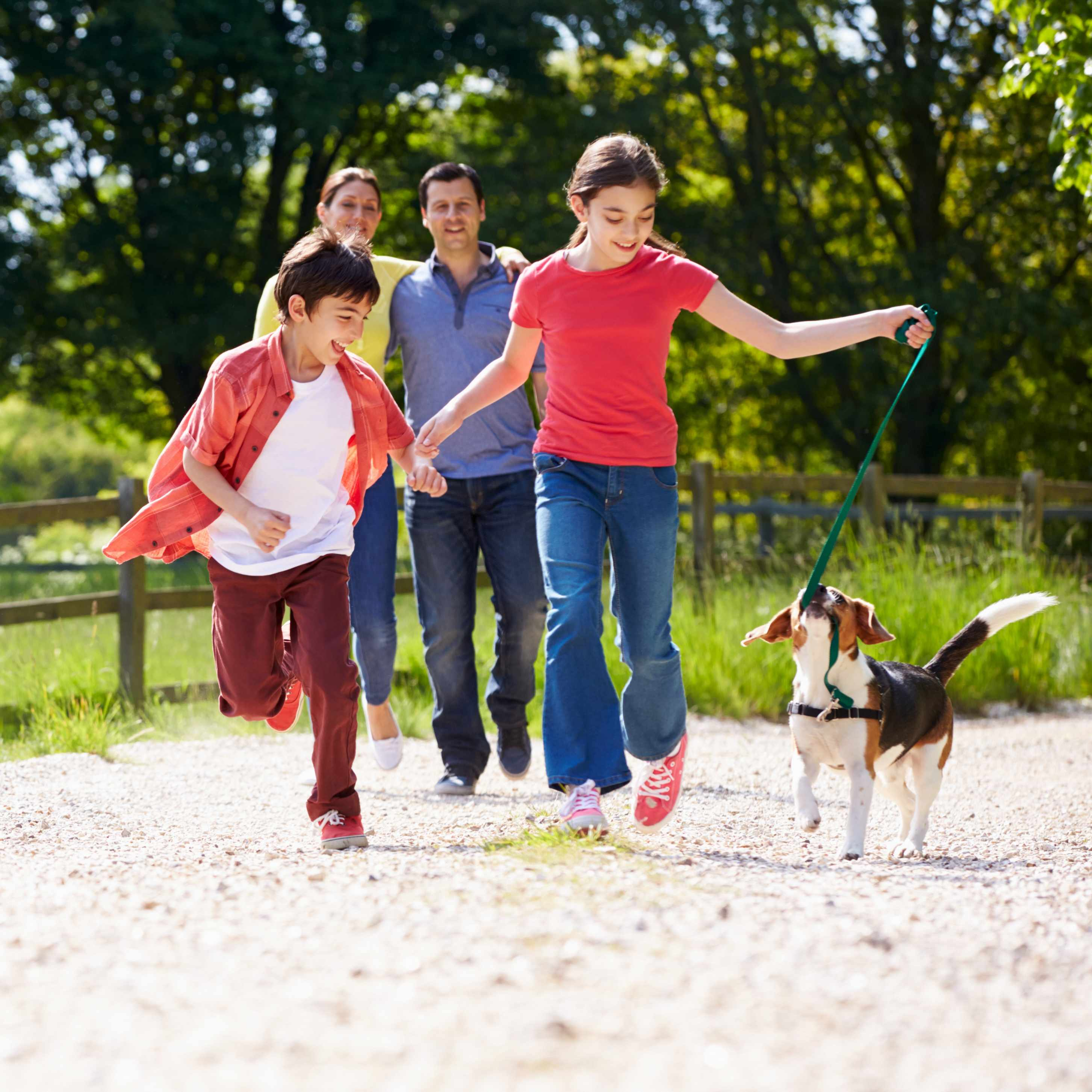 a family outside on a walk with their dog, family pet