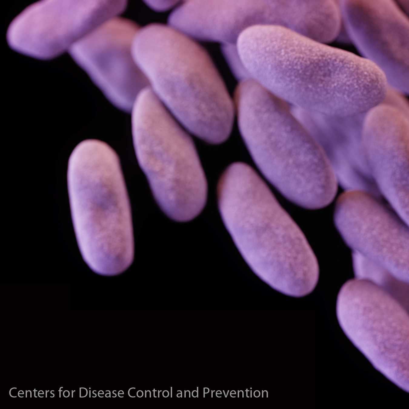 CRE, carbapenem-resistant Enterobacteriaceae 1 x 1