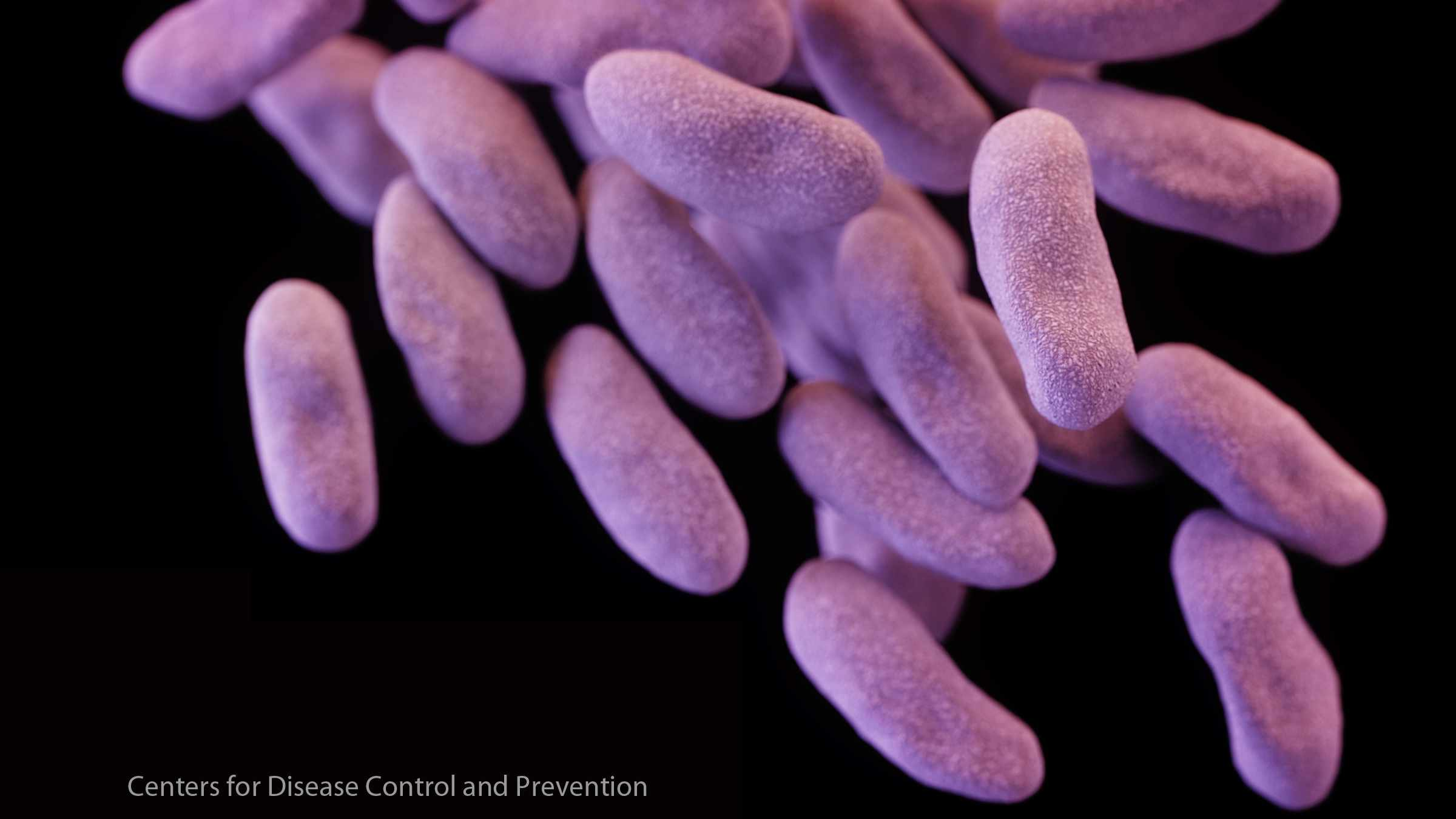 CRE carbapenem-resistant Enterobacteriaceae