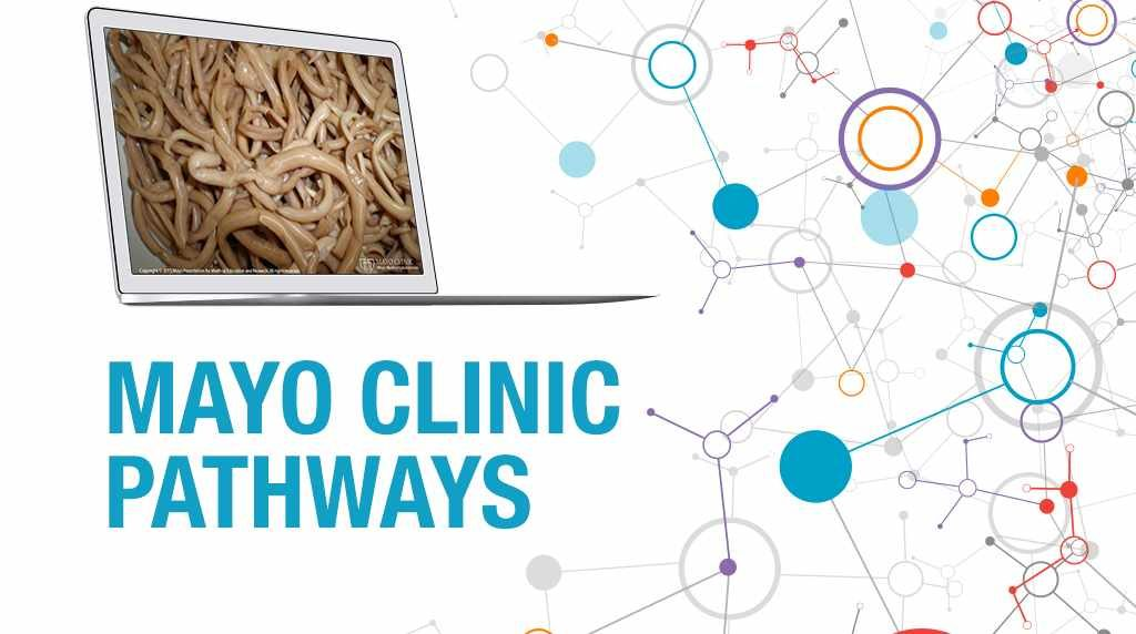 PathWays banner with an image of indeterminate species of worms on a computer screen