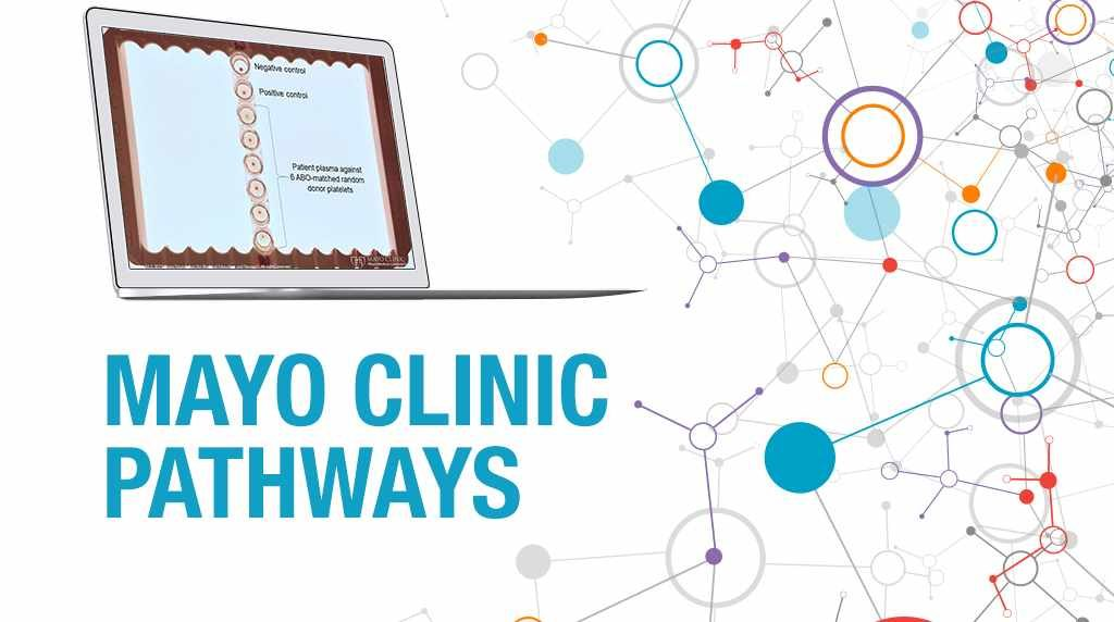 PathWays banner with an image of platelet crossmatching on a computer screen