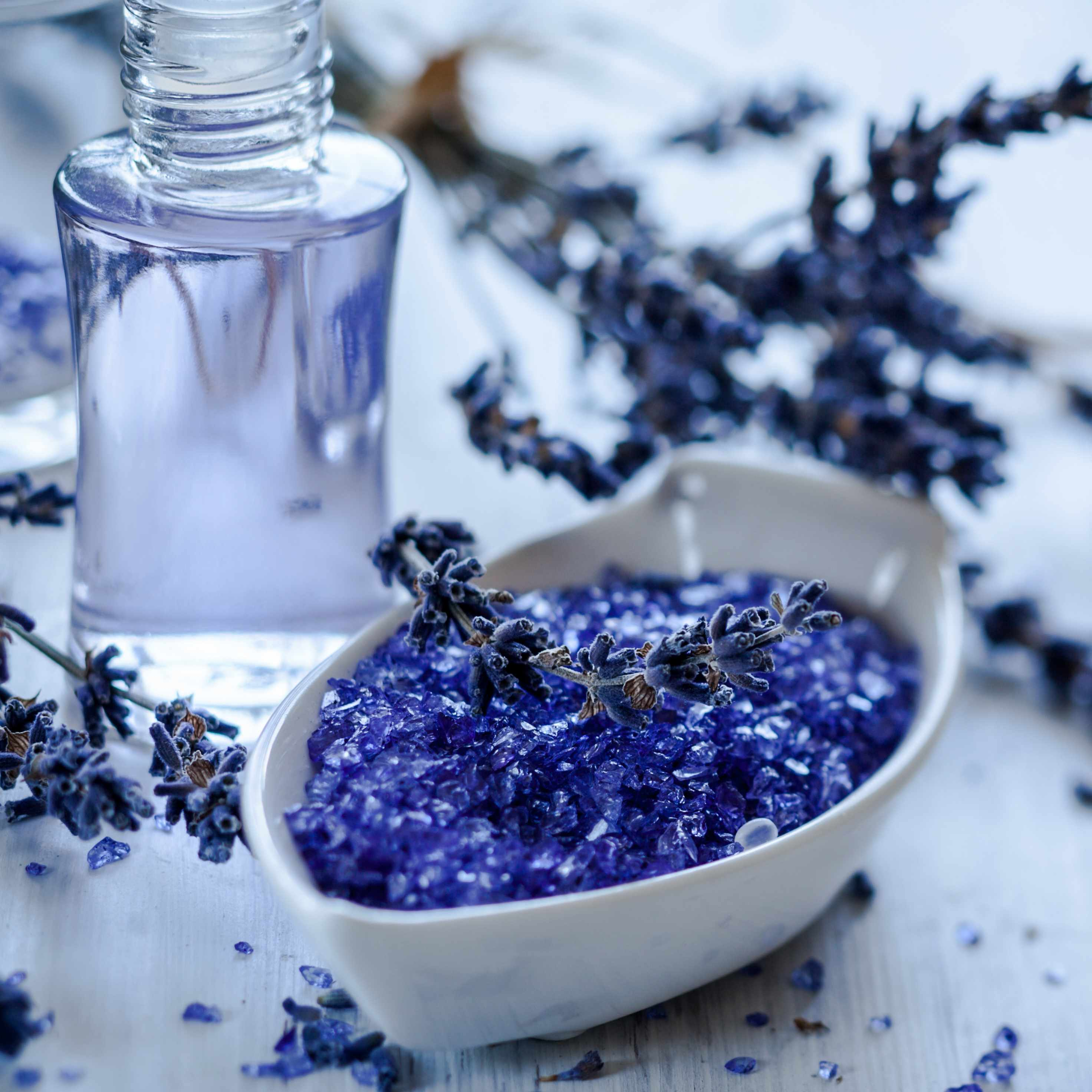 dried lavender flowers with a bottle of essential oils