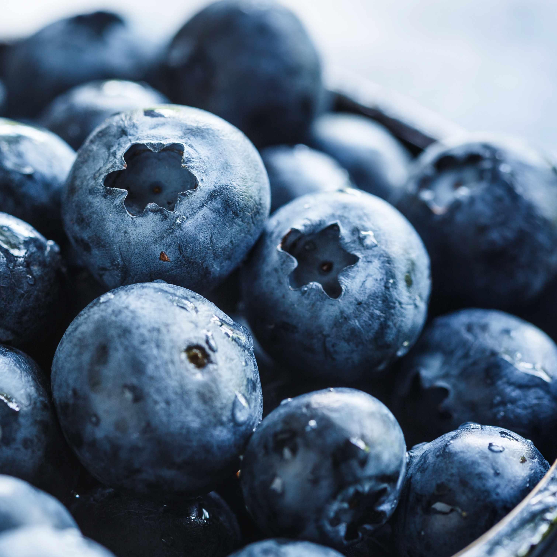 a bowl of dark blue blueberries