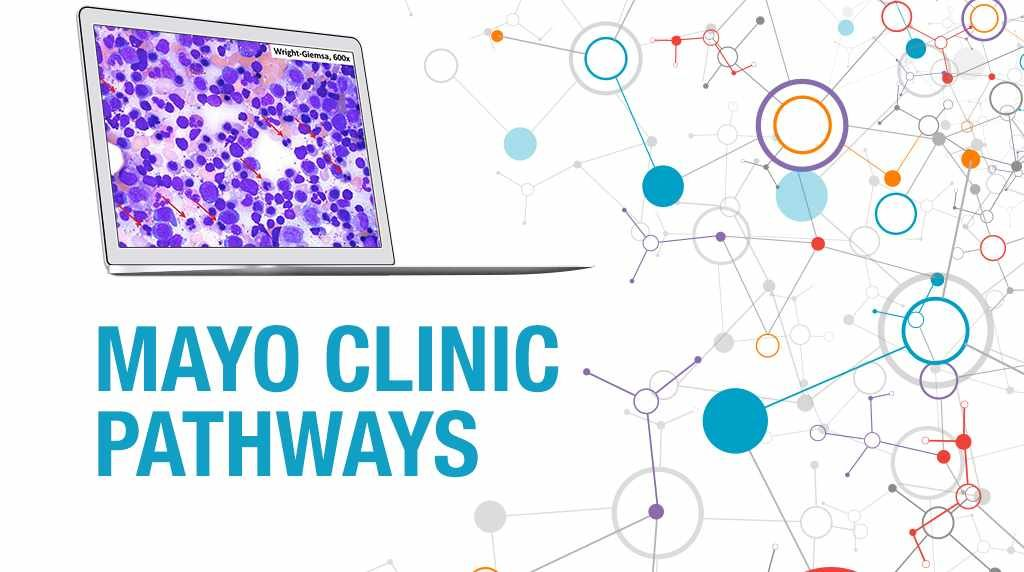 PathWays banner with a slide of bone marrow aspirate on a computer screen