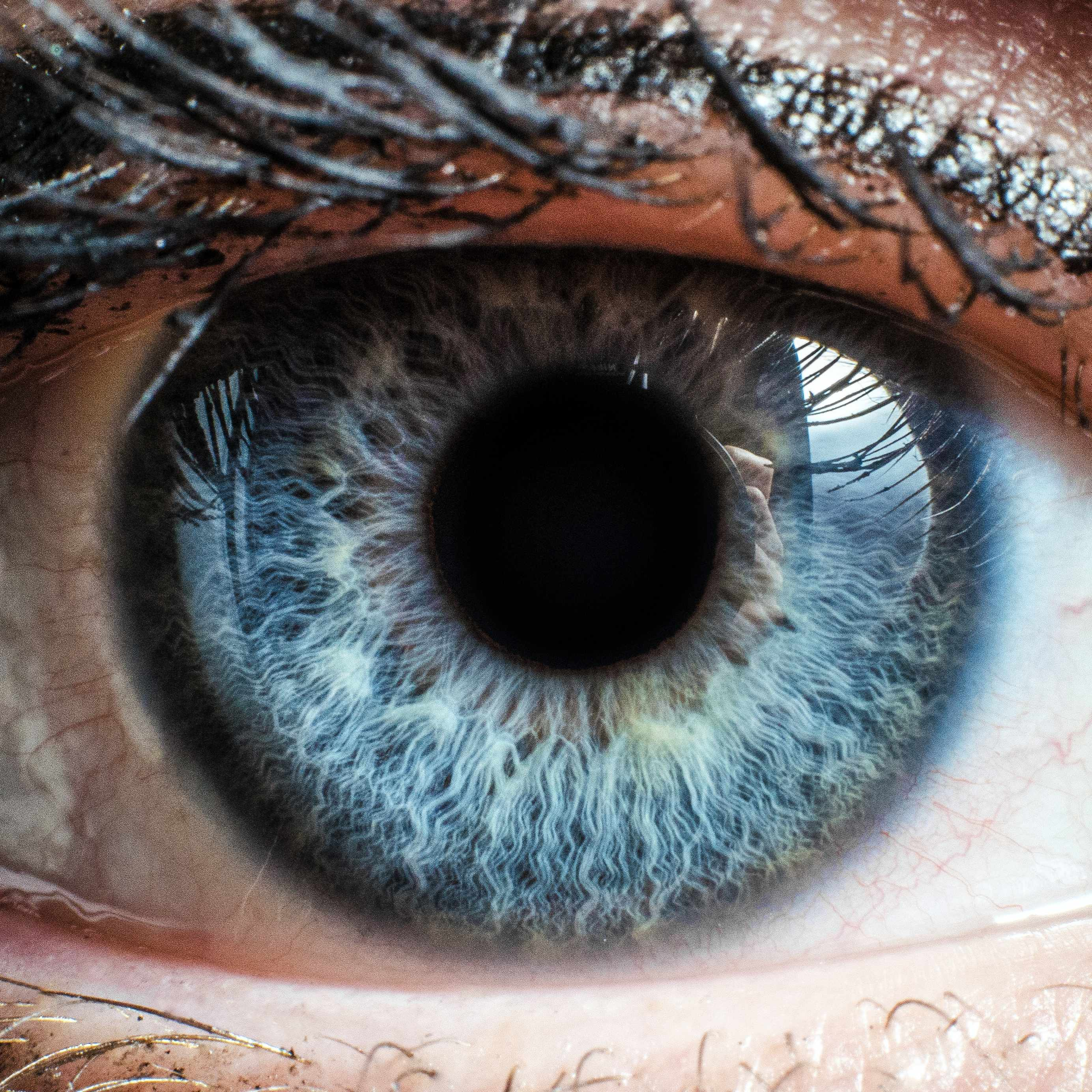 close up of a person's right eye, blue with lashes