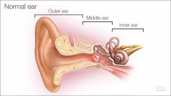 normal_ear_16x9