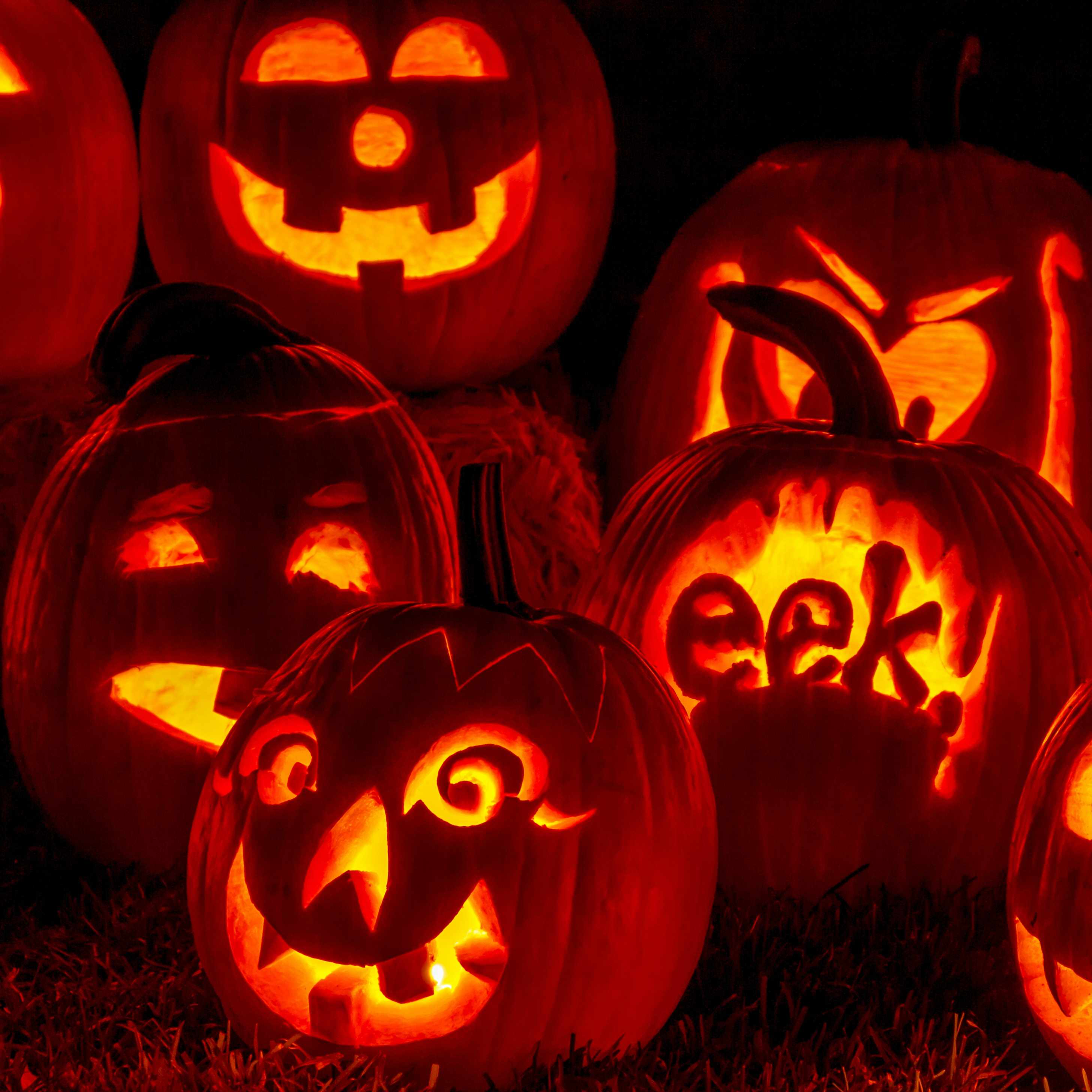 a group of carved out Halloween pumpkins as Jack-O-Lanterns