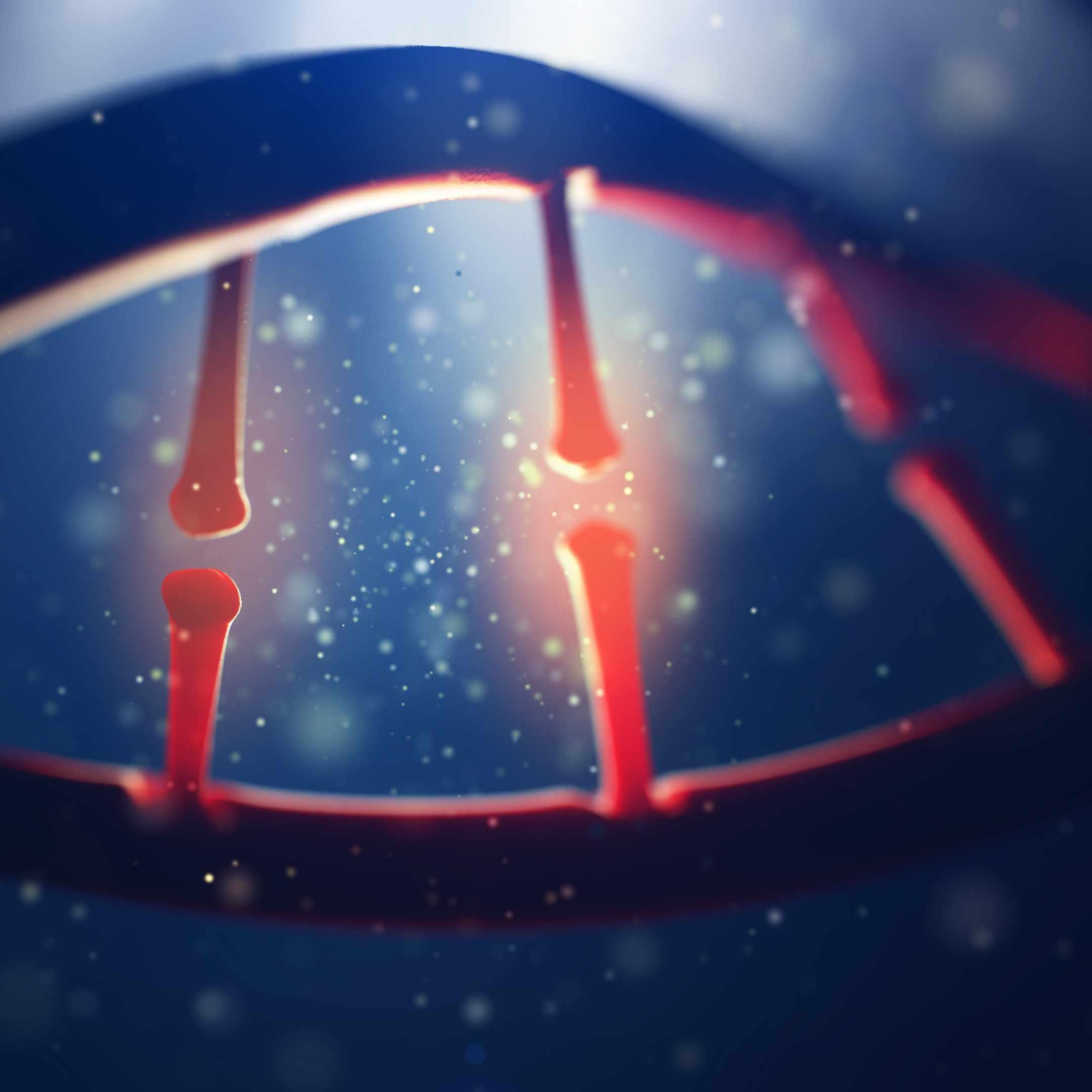 Image of human genome