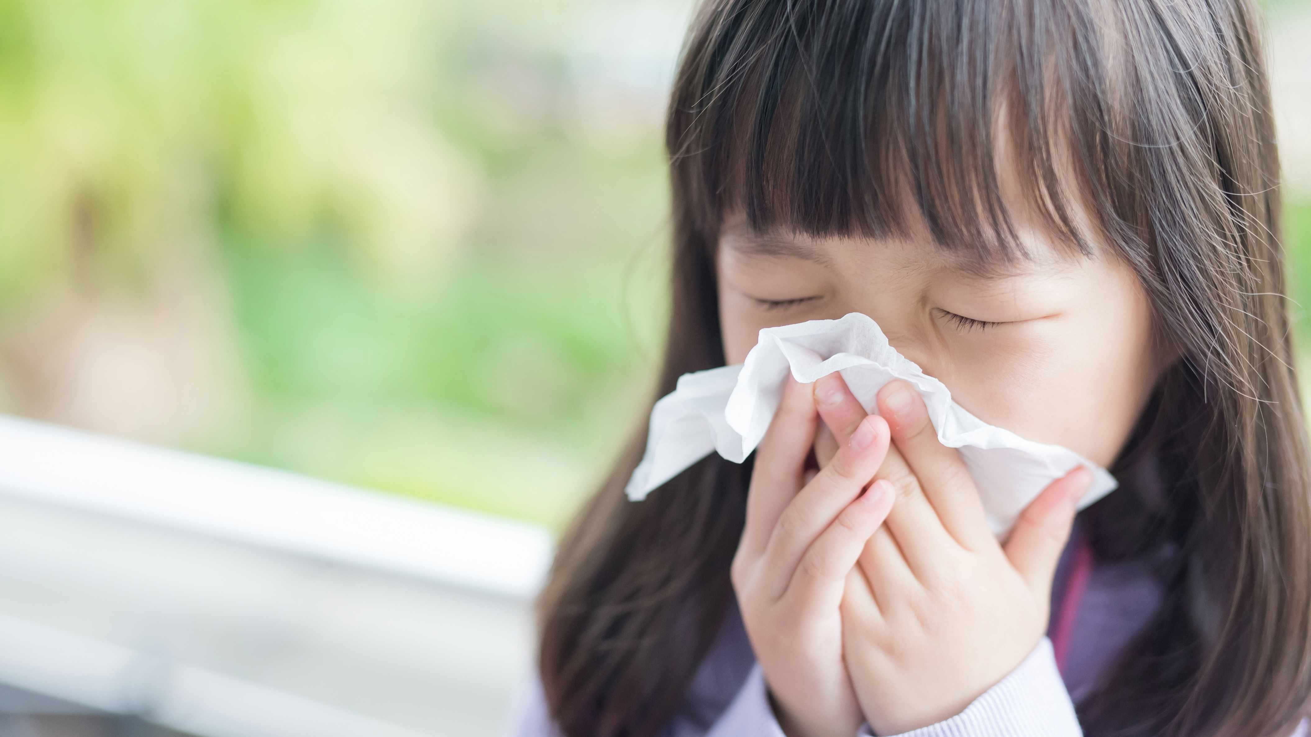 a little girl with a cold or sneezing blowing her nose into a tissue