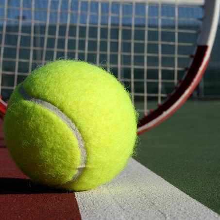 a tennis ball and a tennis racket resting on a court