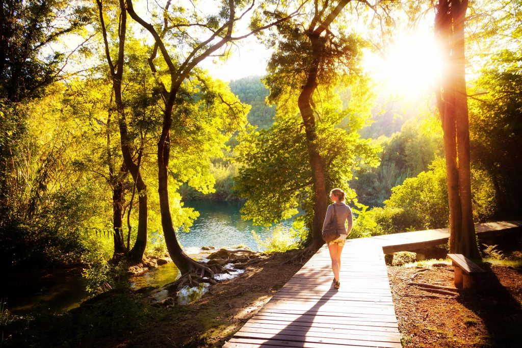 sunshine coming through the trees, person taking nature walk
